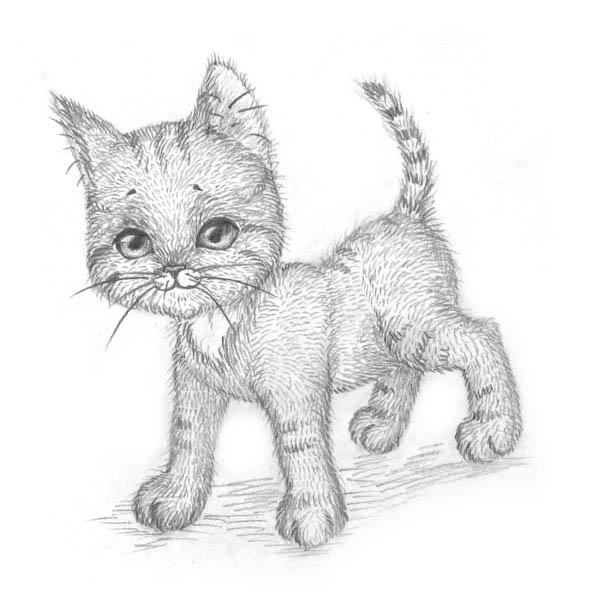 Рисуем котёнка: мастер-класс 0