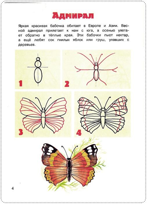 Простые уроки рисования: бабочки и их друзья 0