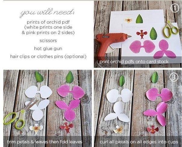 Цветы из бумаги схемы шаблоны орхидея