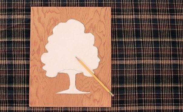 Пуговичное дерево