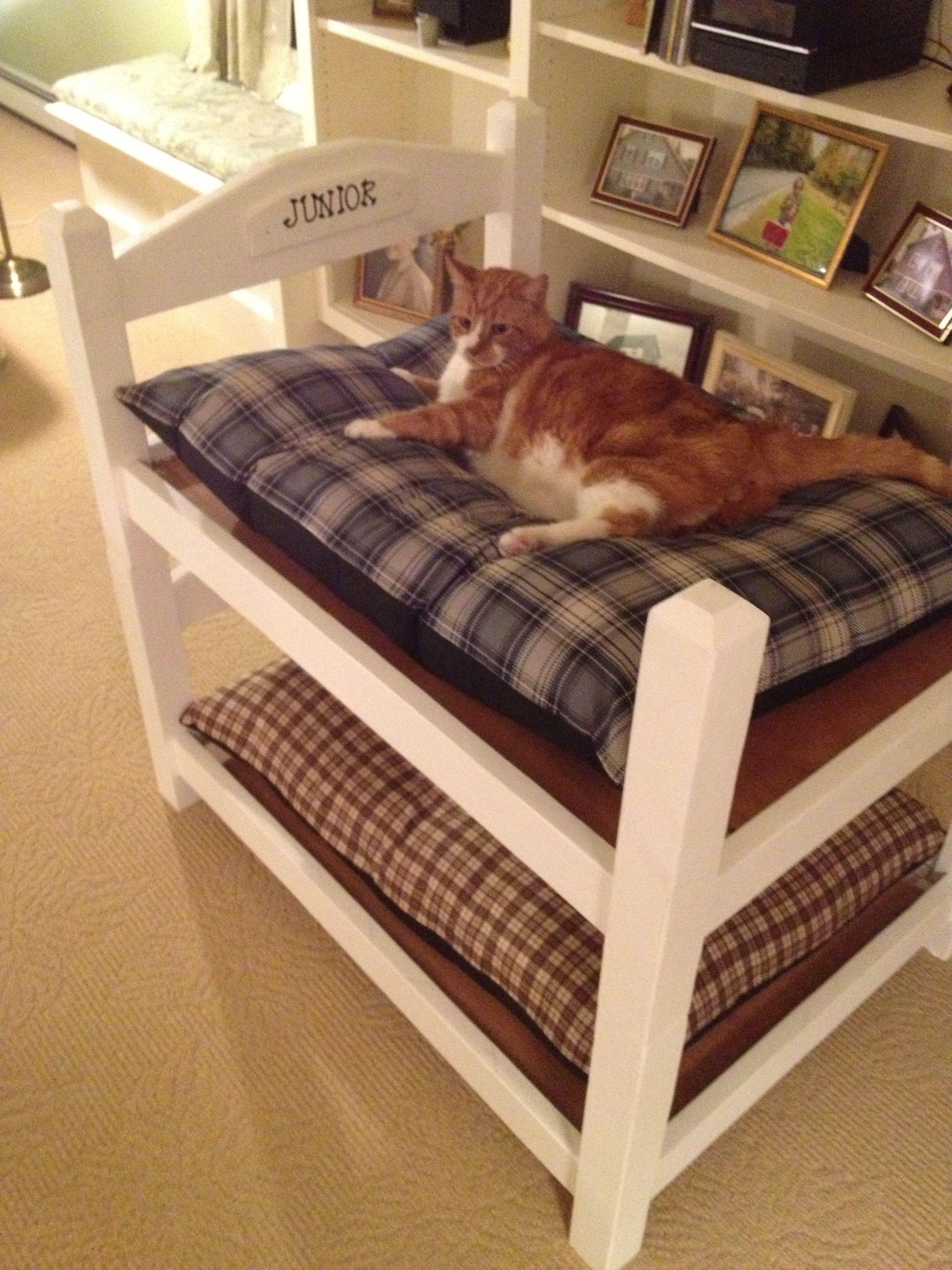 фотоаппаратом, кроватки для кошек фото сказал что надо