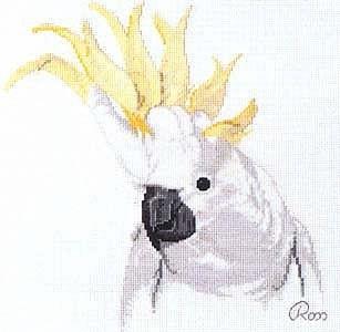 Попугаи какаду